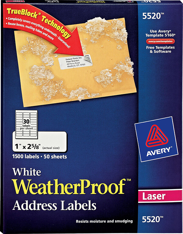 Avery white weatherproof address labels 5520 avery for Avery 5524 template